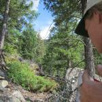 Amber working in steep Douglas-fir forest in Colorado's Front Range, Roosevelt National Forest